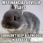 bunny_financialadvice