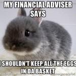 My Financial Adviser Says …